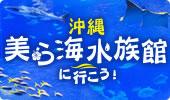 美ら海水族館に行こう!