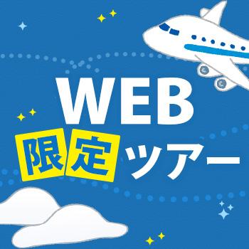 飛行機利用web限定ツアー