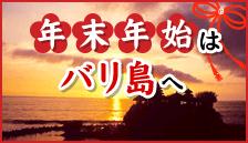 バリ島チャーター