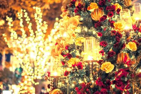 東京ディズニーリゾート®_クリスマス