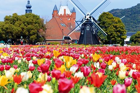 ハウステンボス_大チューリップ祭_バスチオンの花畑(イメージ)