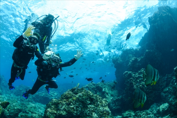 沖縄の海でダイビング。最高!
