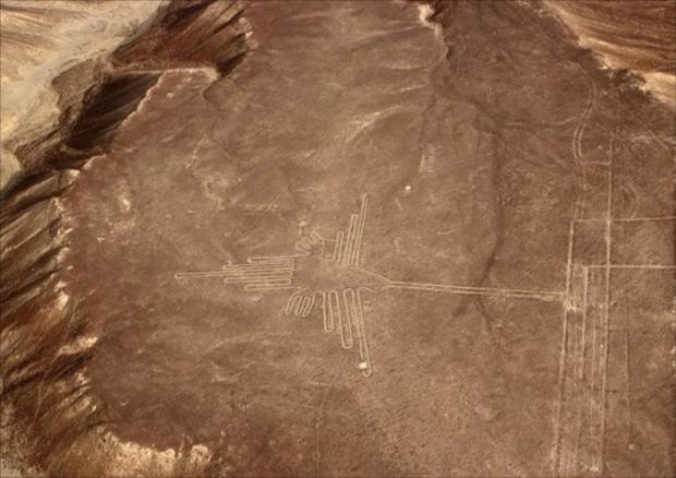 複数の地点で発見されているハチドリの絵