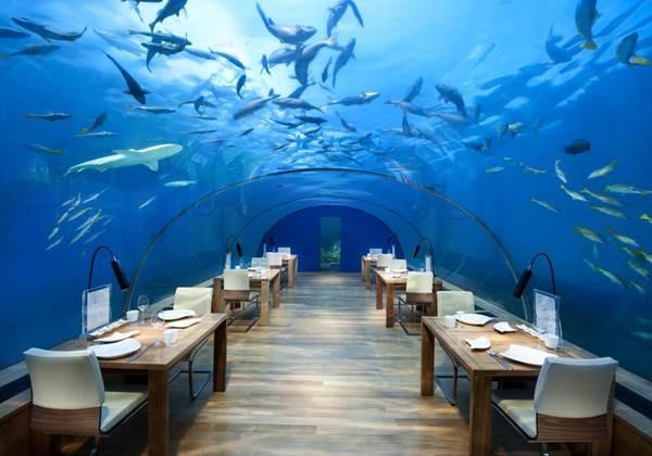 幻想的な水中ディナーはSNS映え満点!