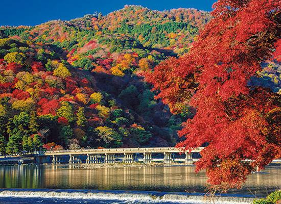 京都_嵐山(イメージ)