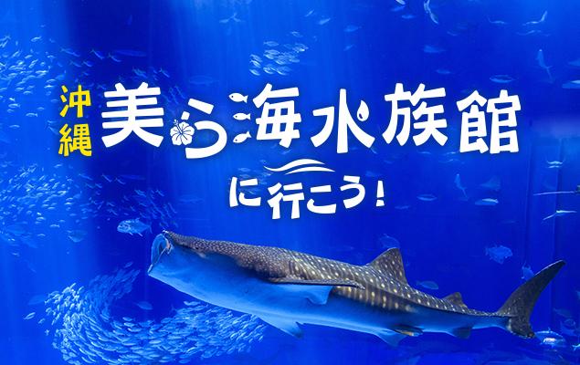 沖縄美ら海水族館へ行こう