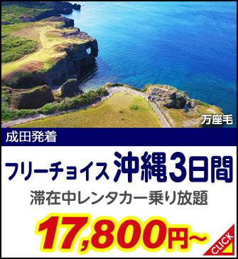 フリーチョイス 沖縄3日間