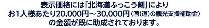 表示価格には「北海道ふっこう割」によりお1人様あたり15,000円〜30,000円〈国(道)の観光支援補助金〉の金額が既に助成されております。