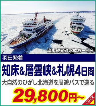知床&層雲峡&札幌4日間