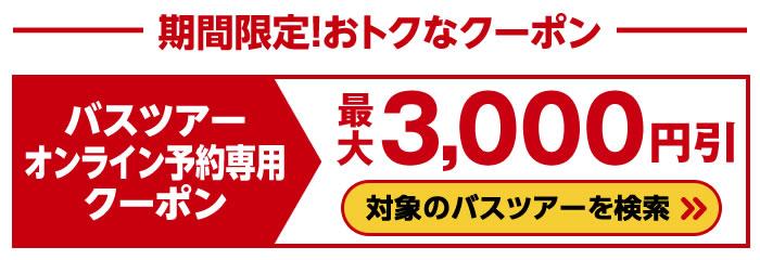 最大3,000円引!バスツアーオンライン予約専用初夢クーポン