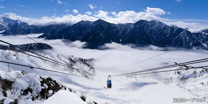 新緑の上高地と大迫力!立山黒部アルペンルート・雪の大谷ウォーク2日間