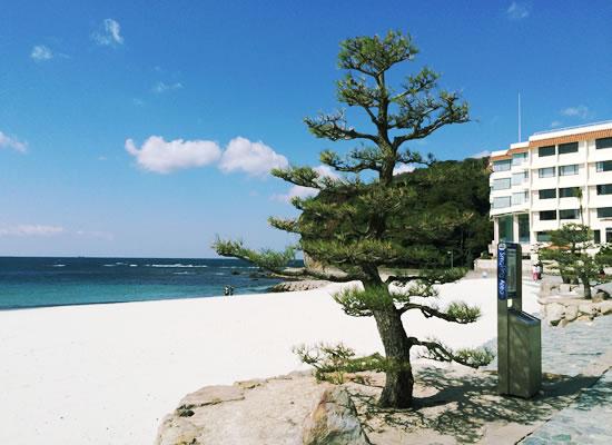和歌山県/白浜温泉(イメージ)