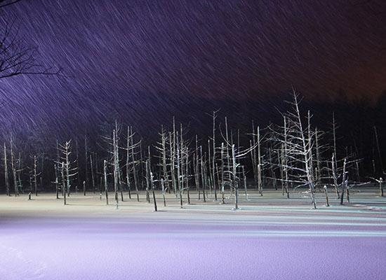 青い池ライトアップ(冬頃/イメージ)