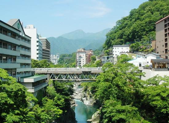 鬼怒川観光ホテル(イメージ)