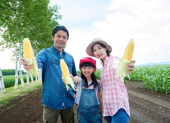収穫体験/イメージ