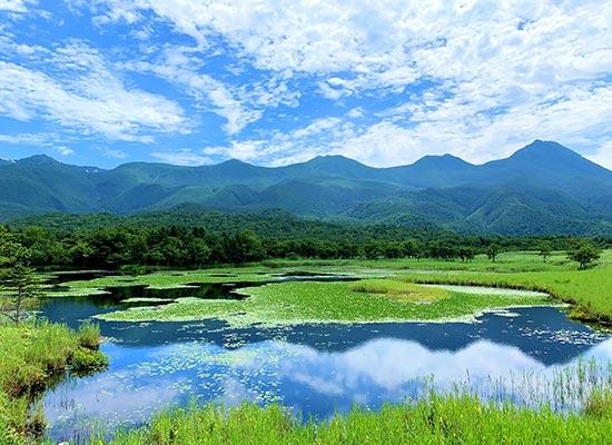 北海道 知床(イメージ)