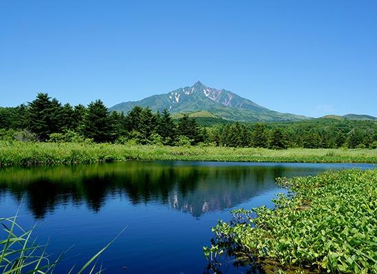 オタトマリ沼と利尻富士
