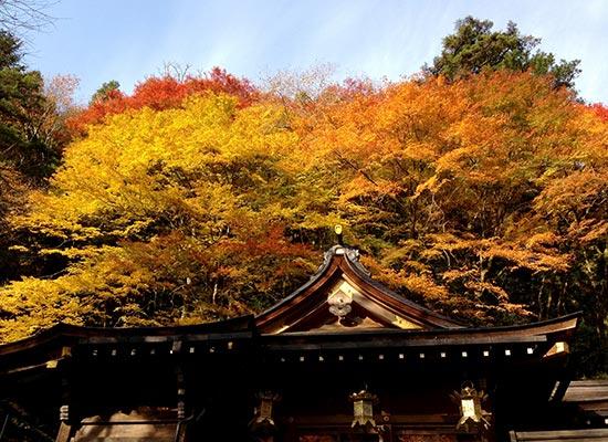 京都_貴船神社(イメージ)