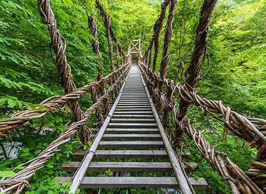 祖谷のかずら橋(イメージ)