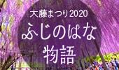 ふじのはな物語~大藤まつり2019~