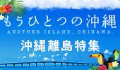 もう一つの沖縄