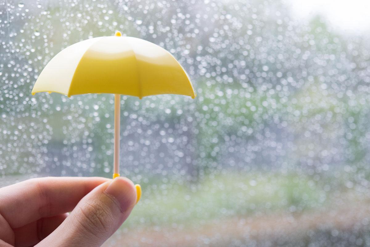 雨なんか怖くない!室内で満喫する沖縄