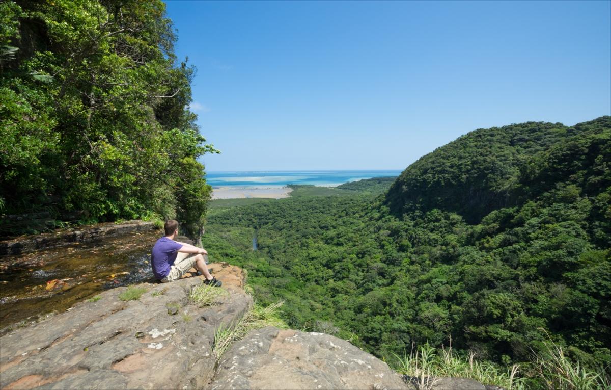 石垣島から西表島へ!自然の見どころ満載のネイチャーアイランド