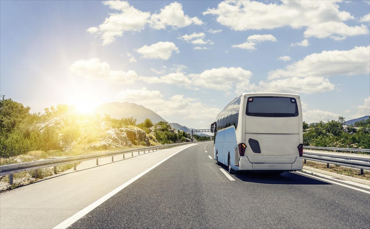 沖縄観光は意外とバスが狙い目?その魅力とは!
