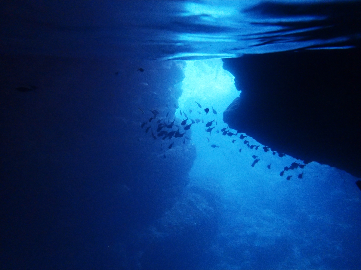 沖縄の「青の洞窟」でシュノーケリング!魅力や方法を徹底解説