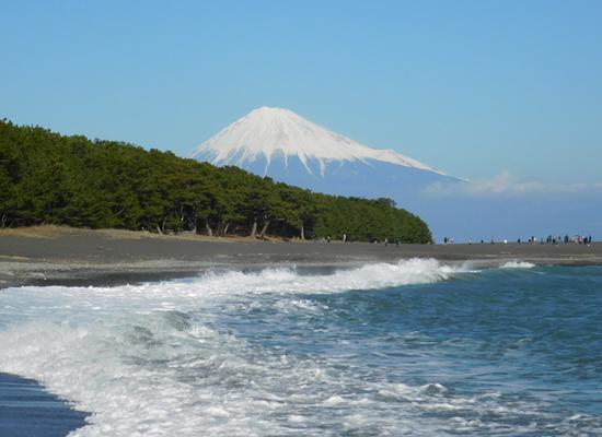 三保松原からの富士(イメージ)