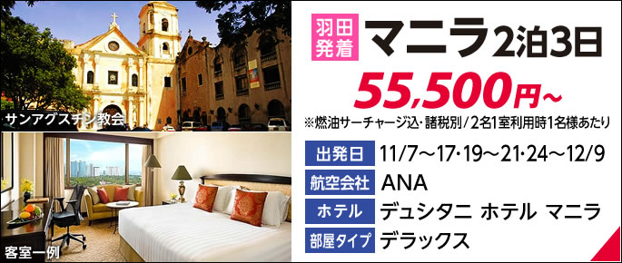ANA利用羽田発着マニラ2泊3日