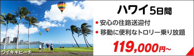 ハワイ5日間