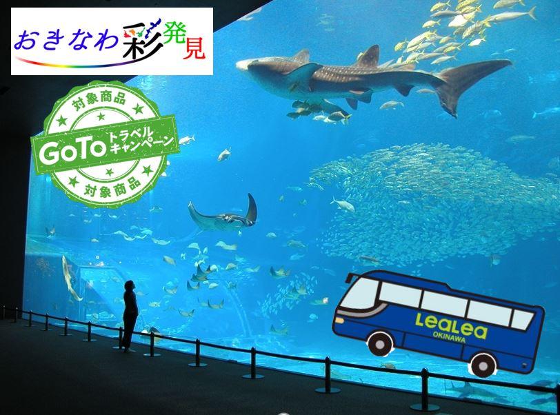 美ら海水族館へ行く バスツアー