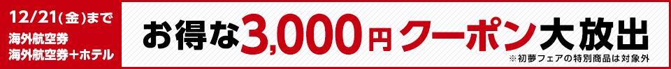 海外航空券 海外航空券+ホテル11/30〜12/21まで お得な3,000円クーポン大放出※初夢フェアの特別商品は対象外