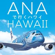 イメージ画像:ANAで行くハワイ